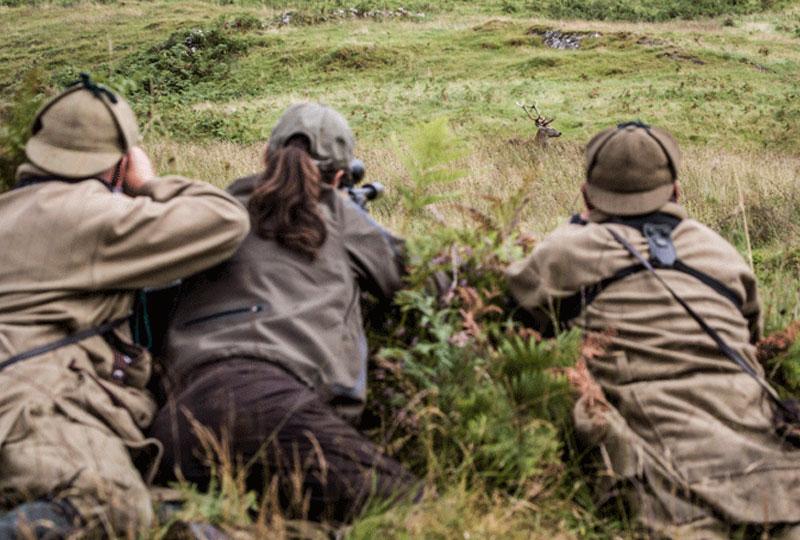 Estate Shoots Scotland