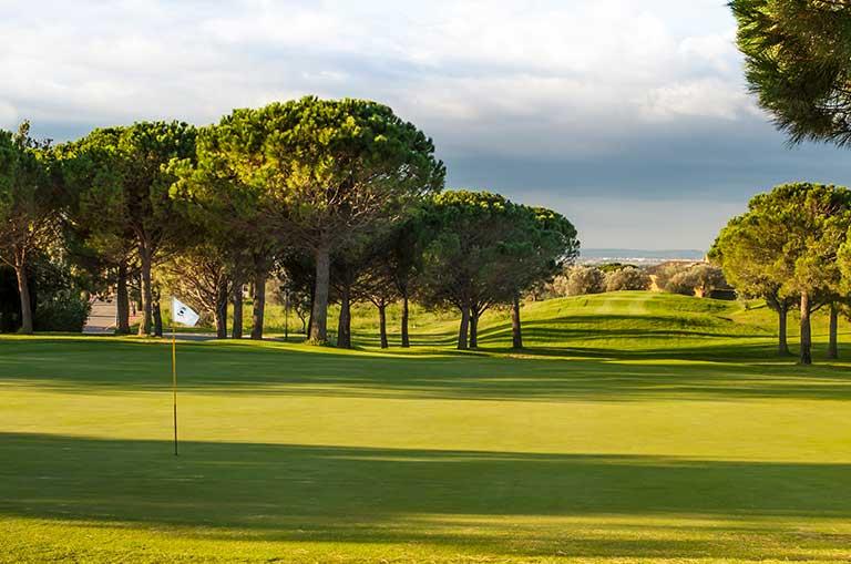 Golf & Dining Break