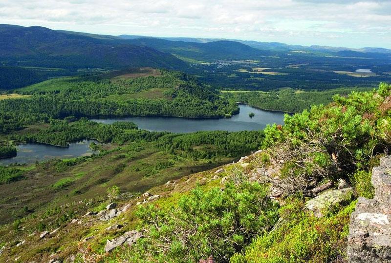 Regional Information Scotland
